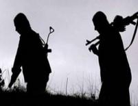 MEHMET ÖZDEMIR - Tunceli'de Hain Saldırı