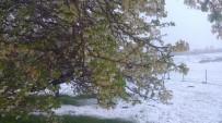 Tuzluca'da Kar Sürprizi