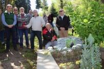 İSMAİL CEM - Gazeteci Ahmet Kayacık Mezarı Başında Anıldı