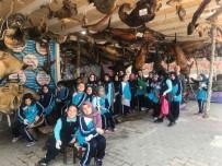 DENİZ CANLILARI - Öğrenciler Çocuk Bayramı'nı Balık Müzesi'nde Kutladı