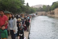 Turizm Haftası'nda Balıklıgöl Ve Tarihi Mekanlar Ziyaretçi Akınına Uğradı