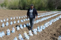 ÖMER KıLıÇ - Zirai Dona Karşı 3 Bin Pet Şişeyle Sera Kurdu