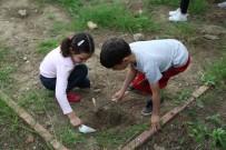 TRUVA - Antandros'un Küçük Arkeologları İş Başında
