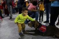BOMBA UZMANI - Jandarma Köpeği Vaka, Çocukların İlgi Odağı Oldu