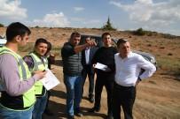 EROZYON - Sazak Erozyon Sahasına 3 Milyon Fidan