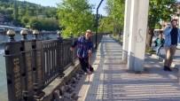 ÖLÜMLÜ - (Özel) Üst Geçit Engellilere Geçit Vermiyor