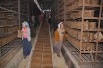 KARAKUYU - Günde 150 Bin Tuğla Üreten Fabrika Kızların Umudu Oldu
