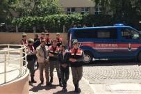 BOZKÖY - Zeytinyağı Ve Bal Hırsızları Tutuklandı