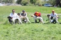 EMRAH YıLMAZ - Bu Da Av Köpeklerinin Güzellik Yarışması