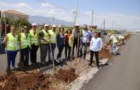SÜLEYMAN KOÇ - Döşemealtı'nda Bin 300 Fıstık Çamı Fidanı Toprakla Buluştu