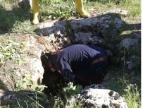 Kuyuda Cesedi Bulunan Kadının Yakınları Ve Çoban Serbest Bırakıldı