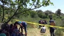 BOZKÖY - Kayıp Kişi Devrilen Traktörün Altında Ölü Bulundu