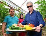 HAKKı UZUN - Sanatçı Cengiz Kurtoğlu Festivalde Seraları Gezip Ürünlerin Tadına Baktı