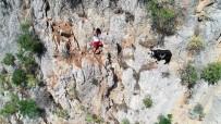 SAKLıKENT - Kayalıklardaki Keçiyi Kurtarmak İsterken Kendi Mahsur Kaldı