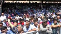 İBRAHIM AYDıN - Kumluca'da Başpehlivan Ali Gürbüz Oldu