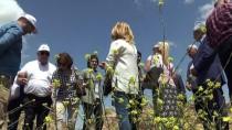 Turizmde 'Altın Elma' Ödülü Diyarbakır'a Verildi