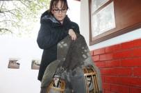 TAŞBURUN - Iğdır'da Kaçak Avlanmaya Para Cezası
