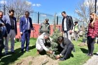 VEHBİ KOÇ - İnönü'de Öğrencilerin Ağaç Dikme Etkinliği