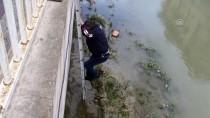 Kanala Düşen Köpek Yavrusunu İtfaiye Kurtardı