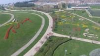 LALE FESTİVALİ - Kocaeli'de 2 Milyon Lale Renk Cümbüşü Oluşturdu