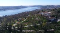 EMIRGAN - (Özel) İstanbul'un Laleri Havadan Görüntülendi