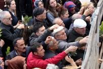 EZİLME TEHLİKESİ - Samsun'da Fidan İzdihamı