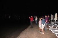 BITEZ - Denizde siyah kuğuyu gören vatandaşlar şok oldu