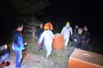 KARINCA YUVASI - Karıncalara Gece Yarısı Operasyonu