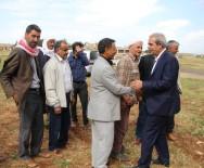 KUBAT - Kırsal Mahallelerde Yürütülen Çalışmaları Denetledi