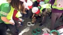 GAZİANTEP HAYVANAT BAHÇESİ - 4 Nisan Dünya Sokak Hayvanları Günü