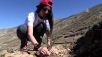 Afrin Şehitlerinin Adı Dideban Dağı'nda Yaşatılacak