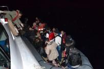 SENEGAL - Ege'de 271 Kaçak Göçmen Yakalandı