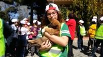 GAZİANTEP HAYVANAT BAHÇESİ - Sokak Hayvanları Günü Gaziantep'te Kutlandı