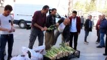 Hakkari'de Yayla Muzu Tezgahlara Düştü