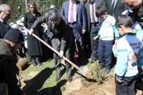 ERDOĞAN BEKTAŞ - Rize'de Afrin Kahramanları İçin Hatıra Ormanı