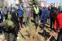 HARUN SARıFAKıOĞULLARı - '52 Zeytin Dalı Şehidi' İçin 52 Zeytin Fidanı Diktiler