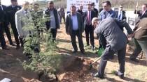 Afrin Şehitleri İçin Hatıra Ormanı Oluşturuldu