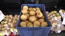 ORTA AVRUPA - Bursa Armudu 'Globalgap' İle Dünyaya Açılacak