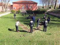 Çayıralan'da 4 Bin Adet Gül Fidanı Toprakla Buluştu