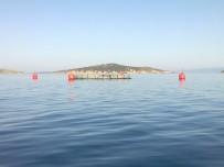 BİLİRKİŞİ RAPORU - Danıştay, Balık Çiftliğinin ÇED İptal Kararını Usulden Bozdu