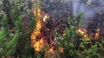 KANLıCA - İstanbul Orman Bölge Müdürlüğünden Aydos Ormanlarında Çıkan Yangın Hakkında Açıklama
