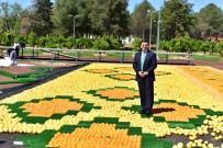 HADRIAN - Kepez'de 'Portakal Çiçeği Günleri' başlıyor