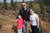 ORMAN MÜDÜRLÜĞÜ - Lapseki'de Bin 500 Adet Fidan Dikimi Yapıldı