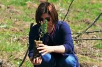 Orman Haftası'nda Şehitler Anısına Fidan