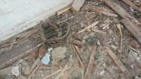 MUSTAFA GÜNEŞ - (Özel) Metruk Bir Binada Tavan Arasına Gizlenmiş Patlamamış El Bombaları Bulundu