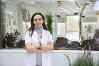 HAREKETSİZLİK - Ameliyatsız Estetik 'Altın İğne'