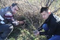 Iğdır'da Keklik Avına Para Cezası