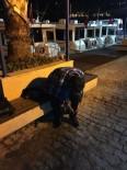 JOKER - İntihar Etmek İçin Denize Atlayan Şahsı Polis Kurtardı