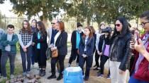 ALI SıRMALı - Lise Öğrencileri Geleneksel Zeytinyağı Sabunu Yapımını Öğrendi