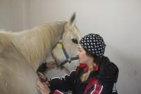 TÜRKIYE JOKEY KULÜBÜ - (Özel) Bu Kadınlar Dokunmaya Korktukları Atların Seyisi Oldular